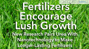Fertilizer Research: Slow-Release Nitrogen Benefits Plant Growth