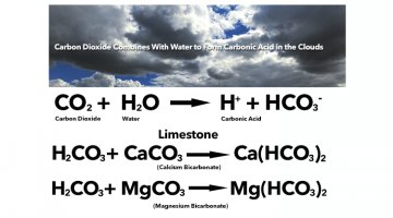 Carbon Cycle Considered: Normal to Non-Normal