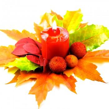 candle-leaf