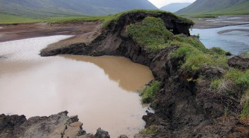 Melting Permafrost in the Arctic: A Tale of Two Feedbacks
