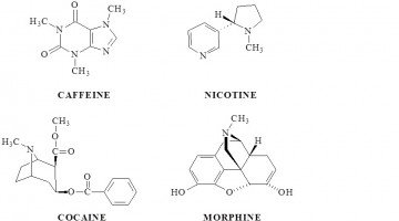 Drugs From Nature: Chemistry And Addictive Alkaloids