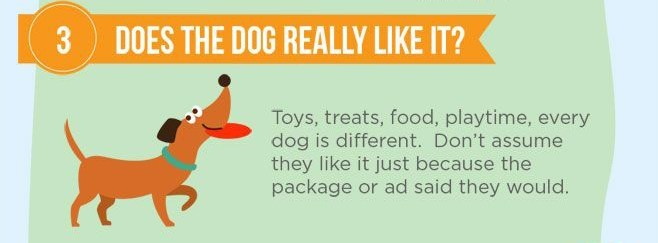 Puppy training tip 03