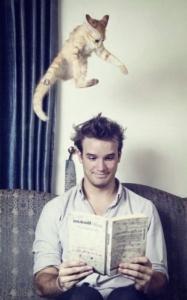 Kitten hunter
