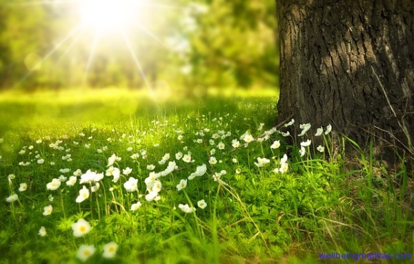 Solar Therapy Benefits