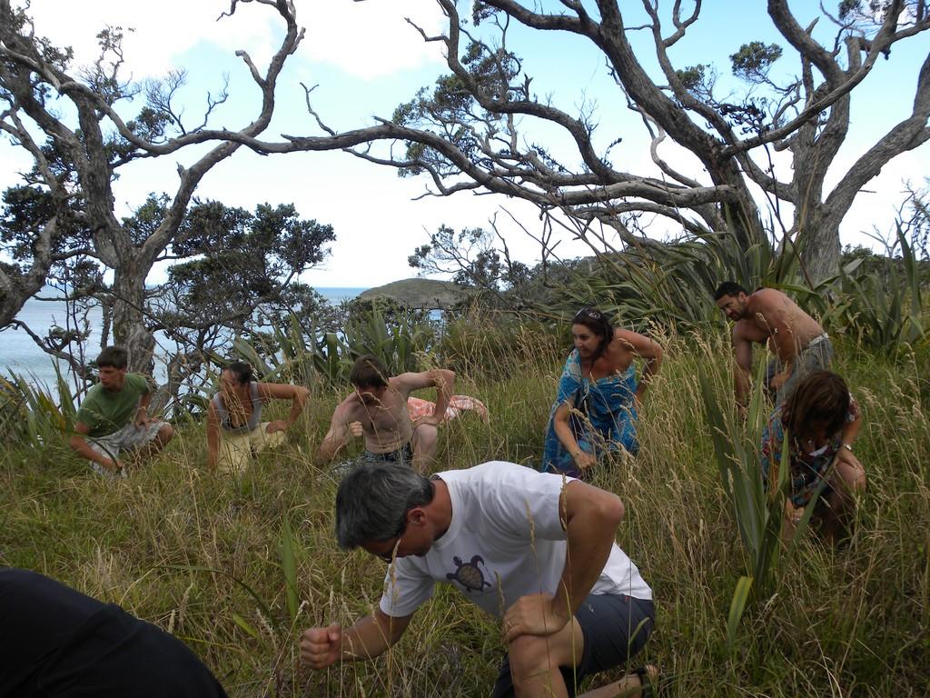 Grandmothers Healing Haka Tour, New Zealand, Jan 10