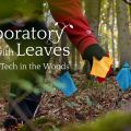 The Laboratory With Leaves (Part 12):  Tech in the Woods