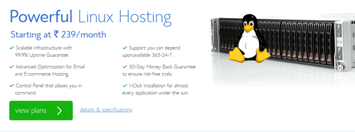 5-best-and-cheap-webhosting-bluehost-india