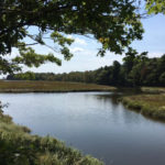 The 1-mile walking tour of the Rachel Carson National Wildlife Refuge offers many gorgeous views of the salt marsh – and sometimes its inhabitants.