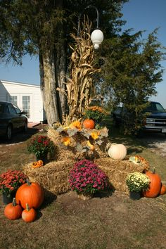 fall decorating with hay bales and mums | of straw and you are set for