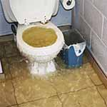Clogged Overflowing Toilets in miami, fl