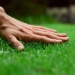 Strategic business plan for Lawn care launch