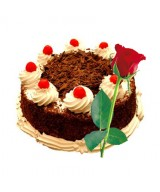 Tempting Black Forest Cake and Single Red Rose