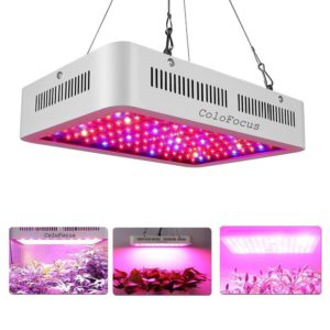 colofocus led grow light