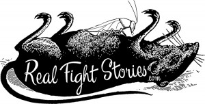 Real Fight Stories