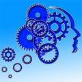 cerveau et prise de decisions