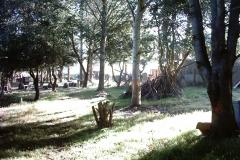 Play Area - 100 Acre Wood