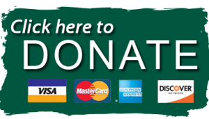 Click to Donate today