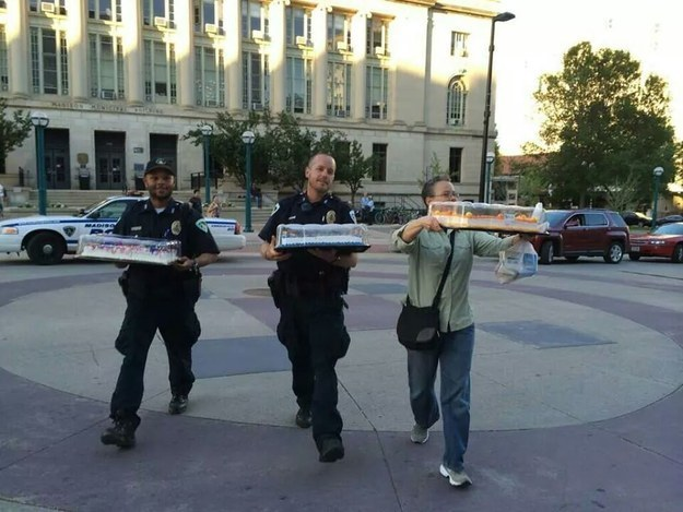 randome-acts-of-kindness-cops-bringing-cake-to-wedding