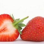 Hydroponic Strawberries – Top Tips for Best Fruit and Yields