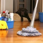 Advice when Cleansing Stones in your house