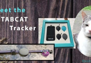 Cool Tabcat Tracker Review image