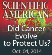 Scientific American – Did Cancer Evolve to Protect Us?