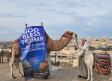 A camel outside the Old City sports a 'God Bless Trump' banner