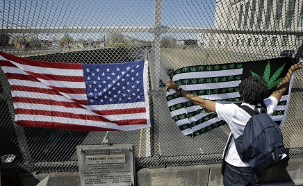 Cannabis & Politics