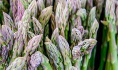 Spring Ingredient Essentials: Asparagus