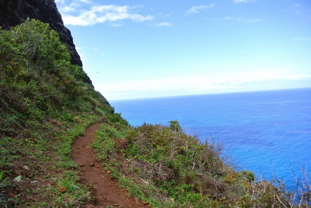 Trail to Hanakoa