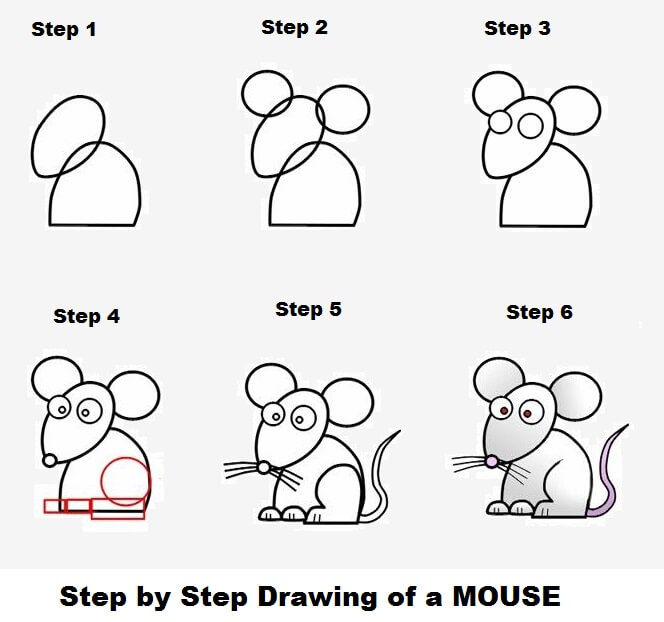 Easy Step by Step Drawings of a Mouse
