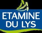 etamine_lys