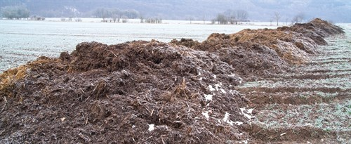piles of manure in cold weather