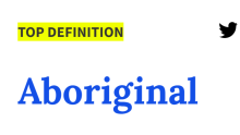 A screenshot of the now-removed offensive definition for Aboriginal on Urban dictionary.