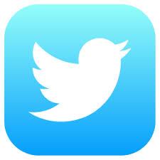 Image result for twitter social media icons