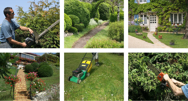 Lawn mowing, garden care, pruning