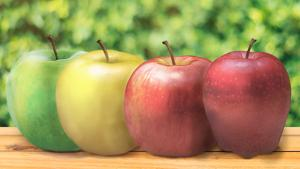 Gala, Fuji, or Golden Delicious: What's your pick?