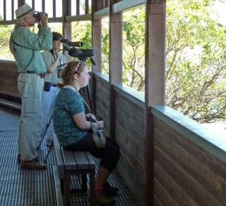 Mamaukala bird hide  (photo copyright Jon Fink)