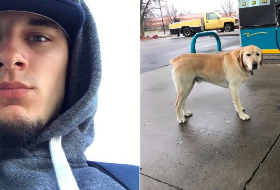 Man Trying To Help Dog Wandering Alone Freezes After Looking At His Tags