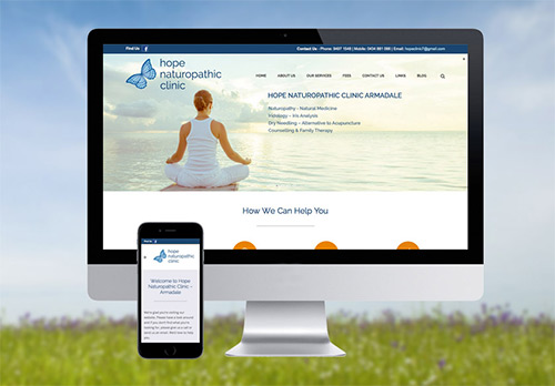 Website, Blogs and Social Media Marketing for Hope Naturopathic Clinic