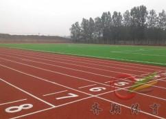 济阳太平镇中学塑胶跑道施工