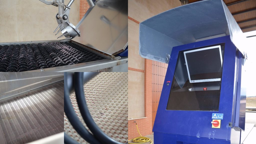 Grapes are sorted with this optical sorter which is run by a computer that can detect poor grapes based on settings created by the winemakers. Grapes that do not meet the standard are removed with a small blast of air.