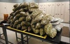Pennington County Sheriff's Office Authorities in South Dakota seized 85 pounds of marijuana during a traffic stop.