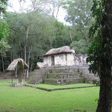 Researchers report early evidence of Maya animal management.