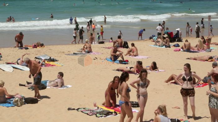 <p> Sydney is the ideal holiday destination for the whole family. Along the east coast there are numerous surf beaches to choose from. But which beaches are regarded at the best in Sydney?</p><p> We are pleased to provide the following overveiw of Sydney's top beaches and how to get there.</p>