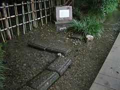 東京都国立市 ママ下湧水