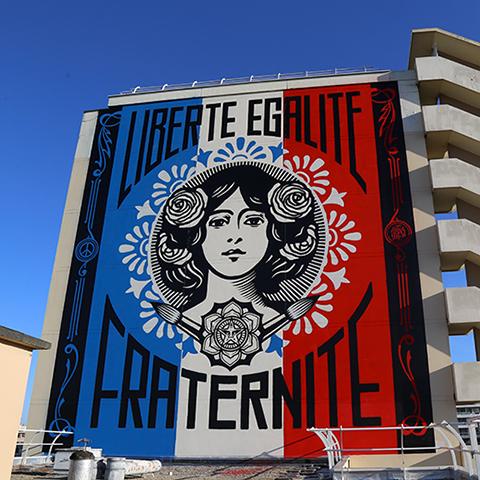 <h3>Shepard Fairey</h3><h4>Liberté, Égalité, Fraternité</h4>