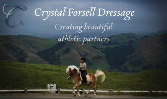 Crystal Forsell, a Leander, Texas dressage trainer.