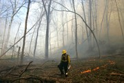 Ohio burning laws: What you can, and can't, burn outdoors in wake of red flag wildfire warning