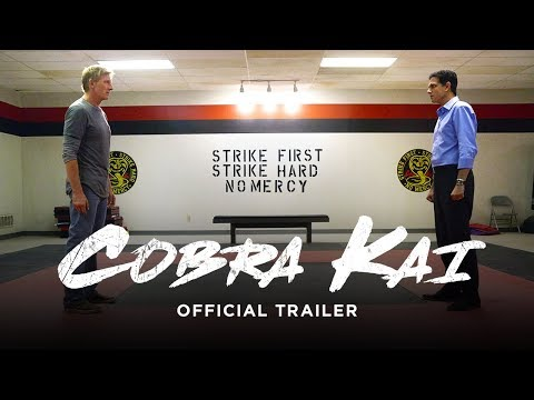 Cobra Kai: Should you watch YouTube's Karate Kid sequel series?